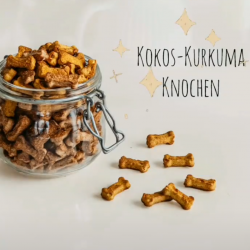 kokos_kurkuma_knochen